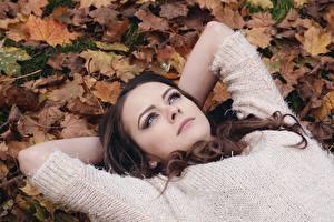 Bilder Herbst Blattwerk Braunhaarige Sweatshirt Blick Schön Mädchens