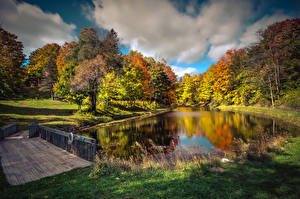 Fotos Herbst Vereinigte Staaten Park Flusse Brücken Bäume Gras Northport Michigan
