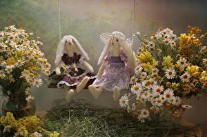 Hintergrundbilder Sträuße Kamillen Löwenmäuler Puppe 2