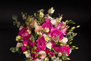Hintergrundbilder Sträuße Rosen Lisianthus Grauer Hintergrund Blütenknospe