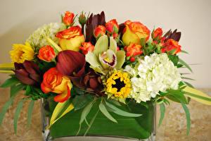 Fotos Blumensträuße Rosen Orchidee Hortensien Calla palustris