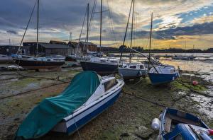 Wallpaper England Evening Coast Speedboat Sailing Yacht Fishbourne Nature