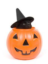 Hintergrundbilder Feiertage Halloween Katze Kürbisse Weißer hintergrund Kätzchen Der Hut Tiere