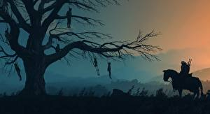 Images Horses The Witcher 3: Wild Hunt Evening Trees Silhouette Branches Games