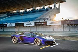 Photo Lamborghini Violet 2019 Aventador SVJ Cars