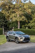 Picture Lexus Grey Metallic 2018 RX 450hL auto
