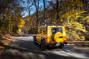 Wallpapers Mercedes-Benz G-Class Motion Back view Yellow AMG G63 2017 Colour Edition