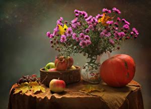 Hintergrundbilder Stillleben Astern Kürbisse Äpfel Tisch Vase Rosa Farbe Weidenkorb Blattwerk Blumen Lebensmittel