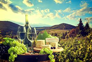 Bilder Stillleben Wein Weintraube Käse Flasche Weinglas Lebensmittel