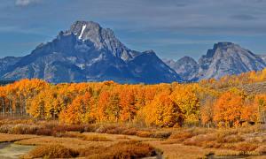 Hintergrundbilder Vereinigte Staaten Herbst Park Gebirge Bäume Grand Teton National Park