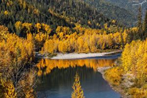 Hintergrundbilder Vereinigte Staaten Herbst Flusse Wälder Middle Fork River Natur