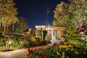Wallpaper USA Houses California Mansion Night time Shrubs Street lights Cities