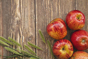 Picture Apples Closeup Boards Ear botany Food