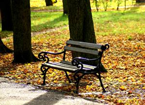 Hintergrundbilder Herbst Blatt Bank (Möbel) Natur