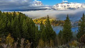 Hintergrundbilder Herbst Wälder Gebirge Landschaftsfotografie Fichten Nebel