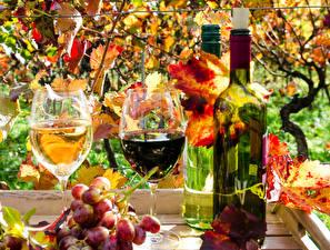 Fotos Herbst Wein Weintraube Flasche Weinglas Blattwerk