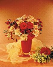 Fotos Blumensträuße Rosen Silber-Akazie Gerbera Vase Blumen
