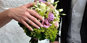 Fotos Großansicht Finger Sträuße Hand Ring Heirat