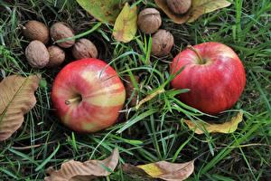 Hintergrundbilder Großansicht Obst Schalenobst Äpfel Gras Blatt Lebensmittel