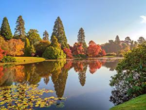 Fotos England Herbst Park Teich Bäume Sheffield Park
