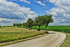 Fotos Felder Wege Himmel Bäume Wolke Natur