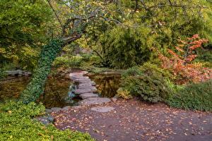 Bilder Deutschland Park Herbst Steine Teich Strauch Bäume Karlsruhe Natur