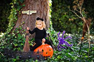 Bilder Halloween Kürbisse Webspinnen Kleine Mädchen Sitzend kind