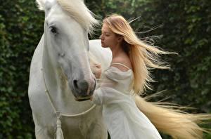 Bilder Pferde Zwei Blond Mädchen Weiß Tiere Mädchens