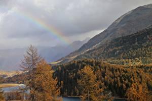 Bureaubladachtergronden Berg Bossen Alpen Bomen Regenboog Natuur