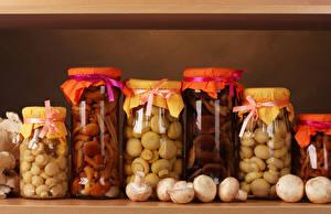 Fotos Pilze Zucht-Champignon Das Essen