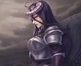 Wallpapers Overlord Warriors Armour Armored Albedo Girls