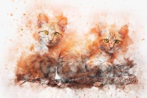 Fotos Gezeichnet Katze Orange rot Zwei Blick ein Tier