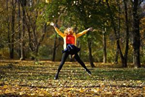 Fotos Park Herbst Sprung Blattwerk Bäume Mädchens
