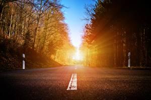 Bilder Straße Wälder Asphalt Bäume Lichtstrahl Natur