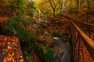 Bilder Russland Krim Park Wasserfall Brücken Herbst Stein Laubmoose Blatt Bäche Natur