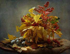 Desktop hintergrundbilder Stillleben Herbst Pilze Natur Mehlbeeren Blattwerk Natur