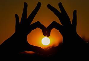 Hintergrundbilder Sonnenaufgänge und Sonnenuntergänge Finger Großansicht Hand Sonne Silhouette