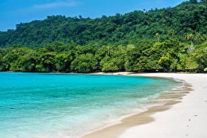 Bilder Tropen Küste Wald Meer Strände Champagne Beach Vanuatu Natur
