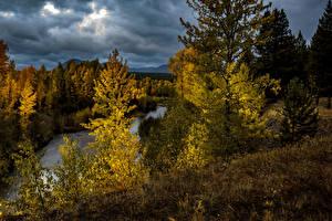 Bilder USA Herbst Park Wälder Flusse Abend Bäume Glacier National Park Montana