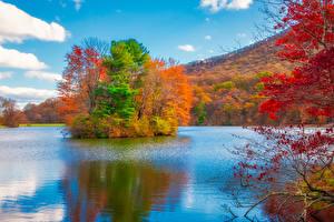 Fotos USA Herbst Park Flusse Insel Bäume Blue Ridge Parkway Virginia