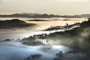 Hintergrundbilder Vietnam Gebirge Wälder Landschaftsfotografie Nebel Da Lat,Lubang plateau