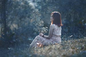 Fotos Asiatische Gras Braune Haare Sitzend Mädchens
