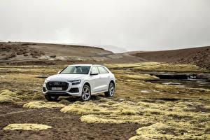 Pictures Audi White Metallic 2018 Q8 55 TFSI quattro Worldwide automobile