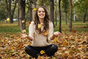 Bilder Herbst Blatt Braunhaarige Sitzend Sweatshirt Lächeln Mädchens