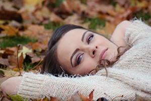 Fotos Herbst Blatt Sweatshirt Starren Gesicht Mädchens