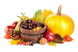 Fotos Herbst Kürbisse Weintraube Äpfel Schalenobst Weißer hintergrund Zapfen Blatt
