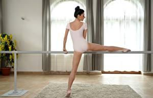 Hintergrundbilder Ballett Dehnübung Brünette Rücken Bein Mädchens