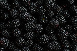Fotos Brombeeren Großansicht Textur Lebensmittel