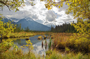 Wallpaper Canada Autumn Mountains Lake Scenery Branches Vermilion Lakes