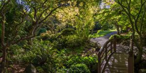 Bilder Kanada Park Brücken Strauch Bäume East Sooke Park